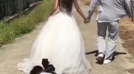 Csak egy átlagos esküvői fotózás