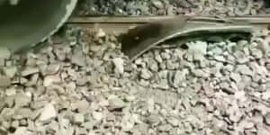 Kisiklott vonat visszaállítása