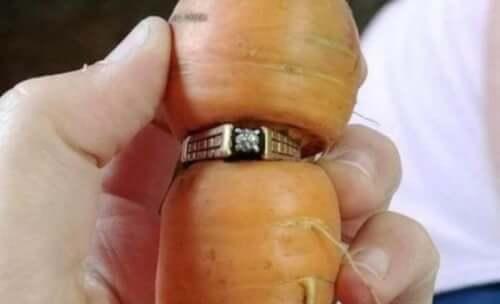 Egy kanadai nő 2004-ben elvesztette a gyűrűjét kertészkedés közben. 13 évvel később megtalálta egy répán.